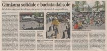 023_Articolo_Comelianti